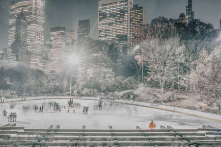 Central Park Ice skating rink with people hanging out and skating
