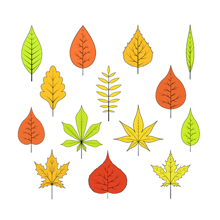 golden apple: autumn leaves on a white isolated background cartoon style in vector EPS 10.