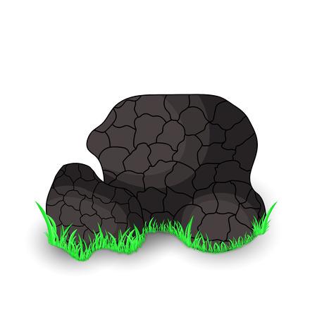 茸の黒トリュフは、草でホワイト バック グラウンドの分離を囲んでいます。