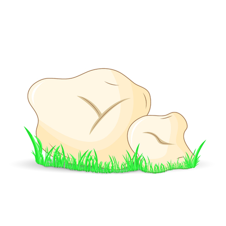 truffe blanche: mushroom white truffle surround isolated on white background with grass.