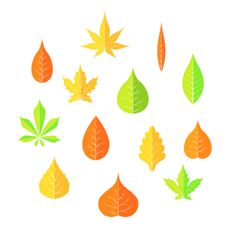 autumn leaves on a white isolated background Flat style vector EPS 10. Illustration