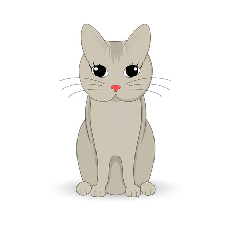 grey cat: Gray cat sitting up. Cartoon mascot. Isolated illustration on white background. Illustration