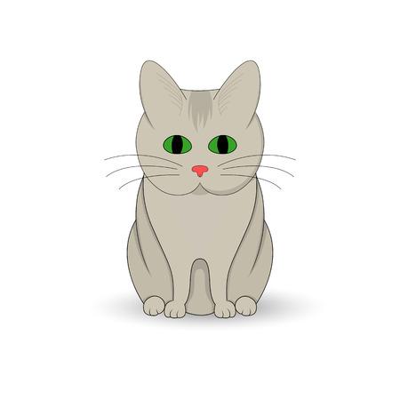 siamese: Gray cat sitting up. Cartoon mascot. Isolated illustration on white background. Illustration