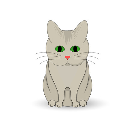 Gray cat sitting up. Cartoon mascot. Isolated illustration on white background. Illustration
