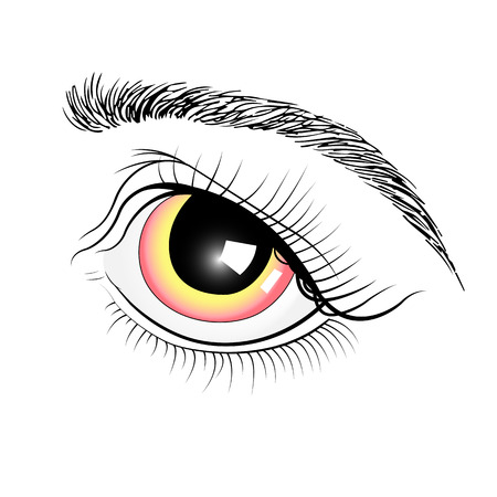 eye make up: Eyes rose from his hands . Isolated on white background. Illustration