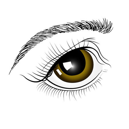 Brown eyes by hand . Isolated on white background.