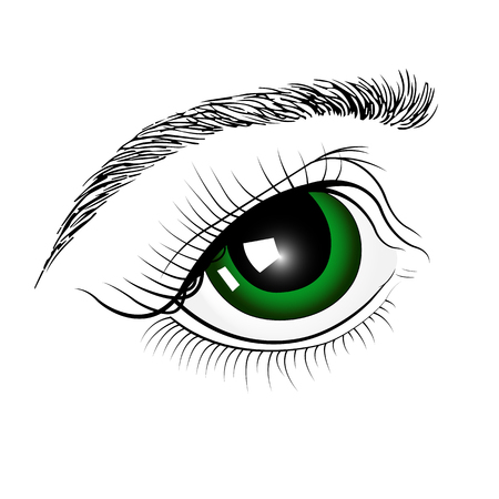 Green eyes by hand . Isolated on white background.