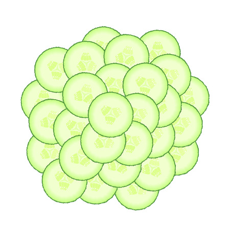 set of green cucumber slices. Illustration of vegetables isolated on a white background. Diet healthy organic food. Ingredient salad. Chopped the food the Cooking. Product from the garden.