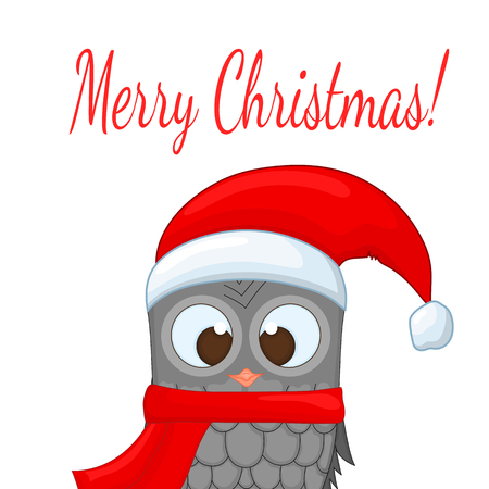 owl in the santa claus hat and scarf postcard for the new year and christmas
