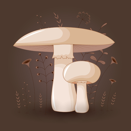 Card with mushrooms champignon on a floral background with branches and plants. Fabulous background with cartoon drawings. 일러스트