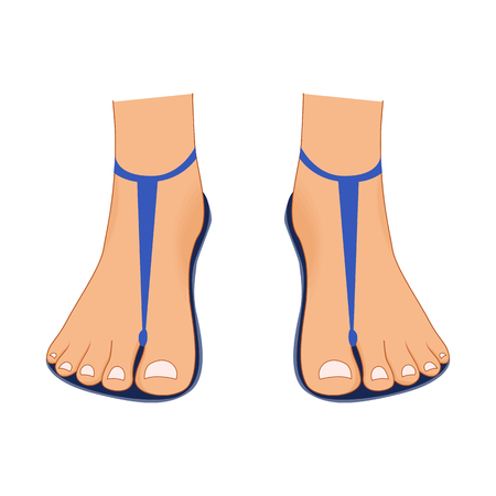 Beautiful bare woman legs with a pedicure in summer beach sandals isolated on white background. Female body parts attractive beauty vector set. Female foot bare, beauty woman leg illustration 일러스트