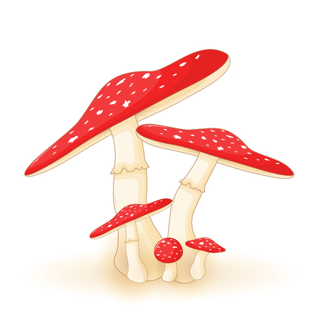 cute vector illustration of mushroom on a white background Banque d'images - 120315846