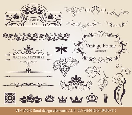 swash: Floral vector design elements and page decoration.