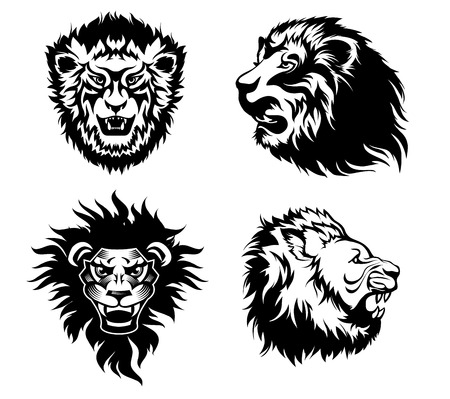 growling: Illustration of the head of a growling  lions