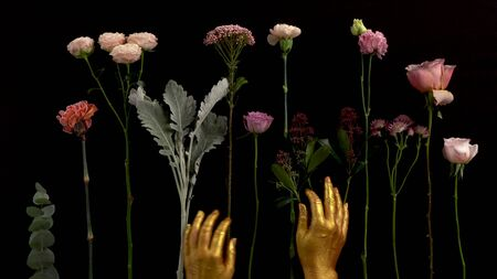 Gold hands touck flowers on black background. flowers lay on the table. Nice footage of woman hands gesture