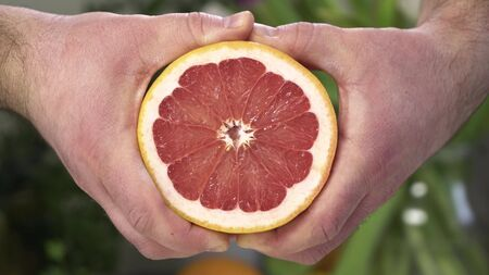 Two male hands squeeze red grapefruit. Grapefruit juice flows down the guys hands. In the background are trees on which various fruits grow.