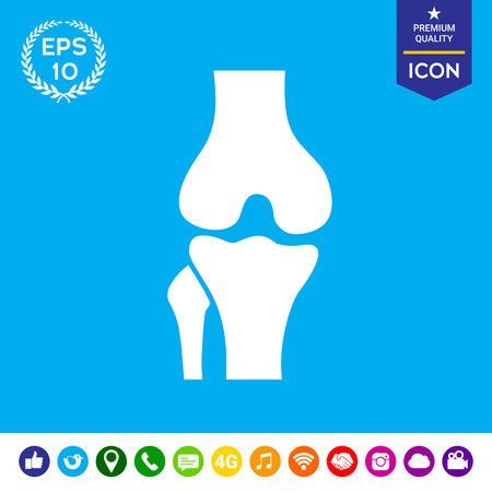 patella: Knee joint icon