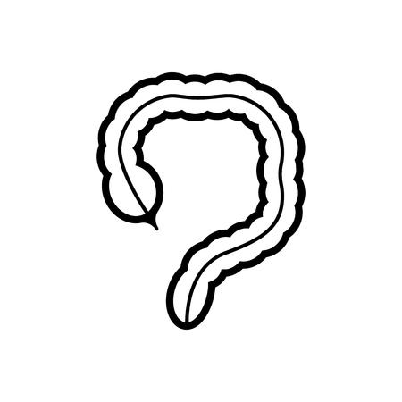 large intestine: Human organ - the large intestine icon