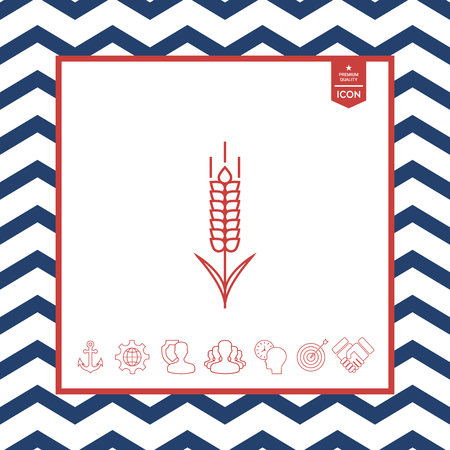 objects: Wheat or rye spikelet icon on isolated background