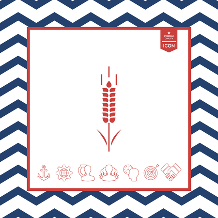 objects: Wheat or rye spikelet icon in isolated background. Illustration
