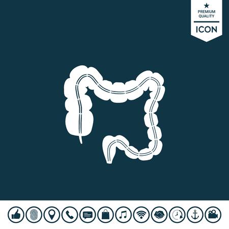Human organ the large intestine. Illustration