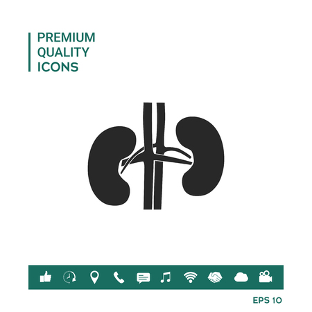 Kidneys Vector illustration. Graphic element for your design.