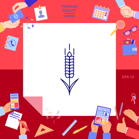 wheat spikelet icon isolated vector illustration.