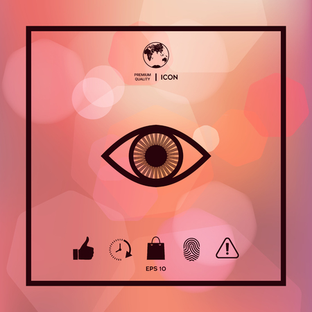Eye symbol icon with iris Vectores