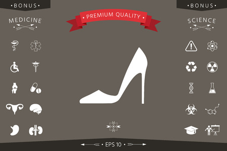 Elegant women shoe