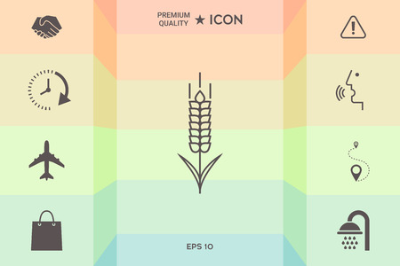 Wheat or rye spike let icon isolated on colorful background.