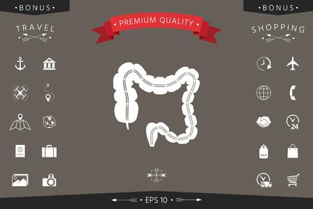 Human organ - the large intestine Vector illustration.
