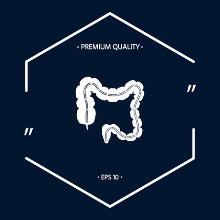 Human organ - the large intestine
