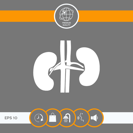 Human organs. Kidney silhouette icon . Signs and symbols - graphic elements for your design Vettoriali