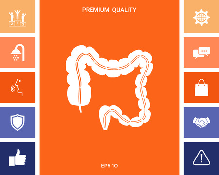 Human organ - the large intestine Stock Vector - 111691175