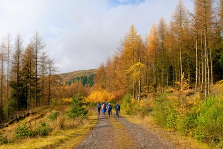 スコットランドのハイランド地方を歩いて人々 のグループ