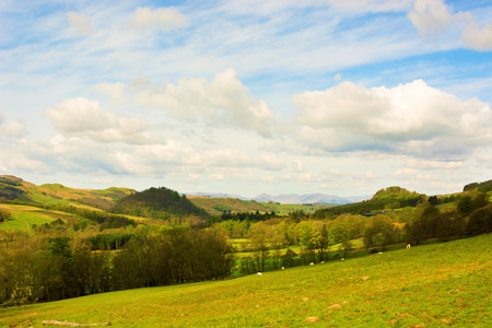 mountains and sky: Rural landscape in Scottish Highlands with forests and grazing fields under beautiful blue sky with clouds Stock Photo