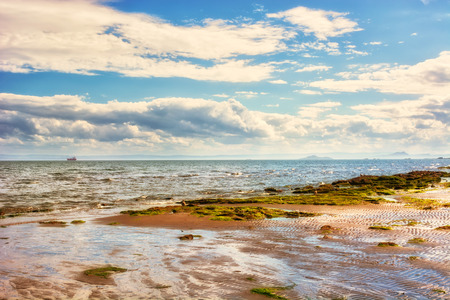 スコットランド、英国で干潮時に海岸の風景。カーコーディ町