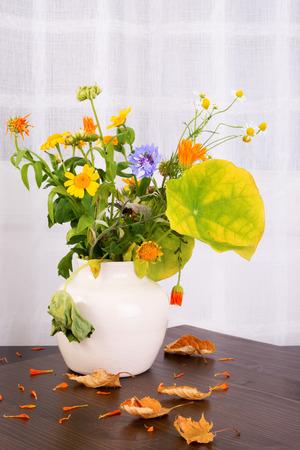 暗い木製の表面に乾燥した陶製の花瓶で花を枯れの明るく素朴なブーケを残します。秋と美しいディケイの感じ。あなたのテキストのためのスペー