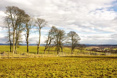 ウェスト ・ ロージアン、スコットランドの Beecraigs の国公園の近くの農地