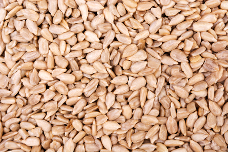 Peeled sunflower seeds background. View from above