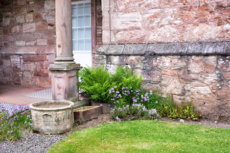 Old flower pots, flowers and ferns by a stone wall of a house  写真素材