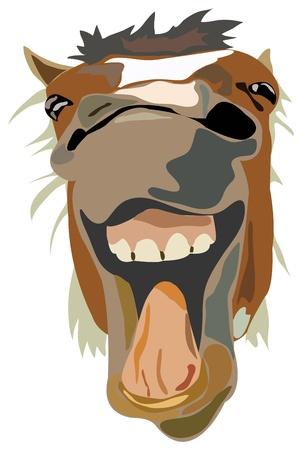 cabeza de caballo: Ilustraci�n vectorial del caballo riendo aislado Foto de archivo