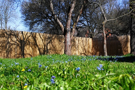 sunny yard in the spring with fense as background photo