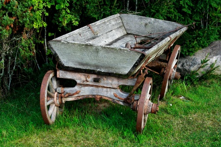 horse carriage: Old and used wagon standing near green bushes