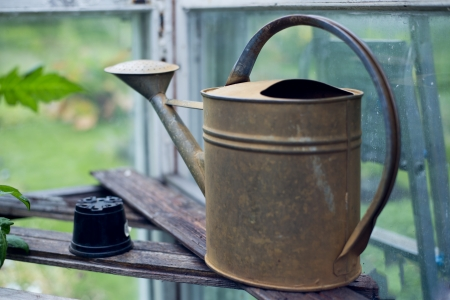 Old fashioned watering can standing in big greenhouse Stock Photo - 14304347