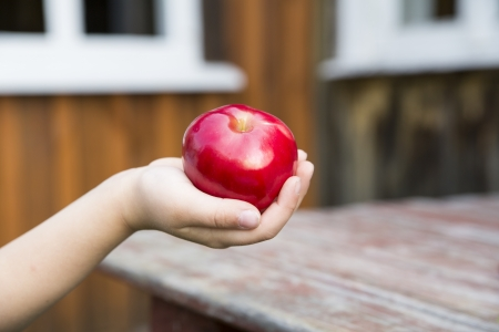zoomed: Zoomed ripe red apple at child soft hand
