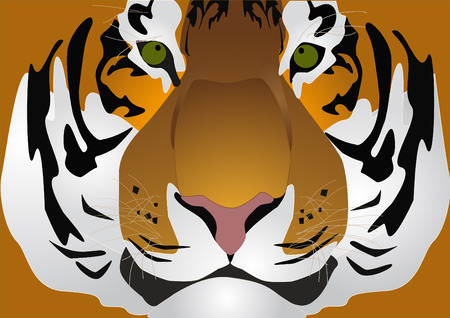 illustration, tiger with green eye and rose-colored nose Stock Vector - 5603279