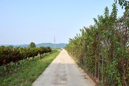 A view of the peaceful countryside with a road leading straight to the horizon in Jechun, South Korea. Stock Photo