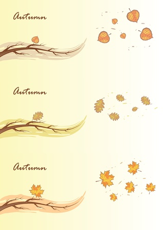 Autumn branches. Stock Vector - 10506596
