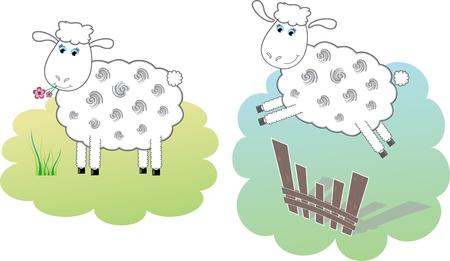 salto de valla: Dos ovejas blancas Vectores